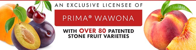 Wawona License Ad